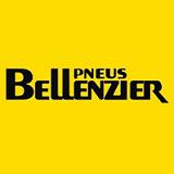 Bellenzier Pneus